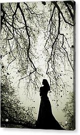 Shadow Fairy Acrylic Print by Cambion Art