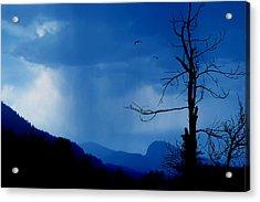 Shadows In The Rain  Acrylic Print by John  Poon