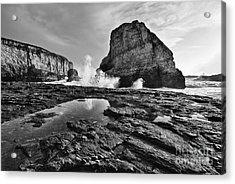 Shark Fin Cove Reflection Acrylic Print by Jamie Pham