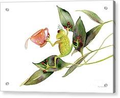 She Frog Acrylic Print by Amy Kirkpatrick