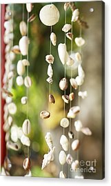 Shell Windchimes Acrylic Print by Kyle Rothenborg - Printscapes