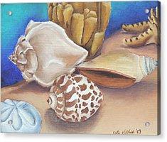 Shells Acrylic Print by Katiana Valdes