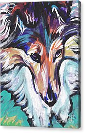 Sheltie Luv Acrylic Print by Lea S