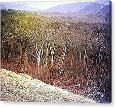 Shenandoah Wilderness Acrylic Print by Susan  Epps Oliver