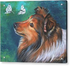 Shetland Sheepdog And Butterfly Acrylic Print by Lee Ann Shepard