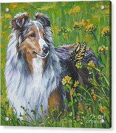 Shetland Sheepdog Wildflowers Acrylic Print by Lee Ann Shepard