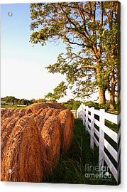 Side-by-side Acrylic Print by Todd A Blanchard