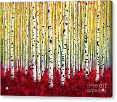 Silver Birches Acrylic Print by Hailey E Herrera