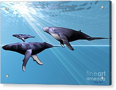 Silver Sea Acrylic Print by Corey Ford