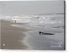 Silvery Morning Huntington Beach Acrylic Print by Linda Queally