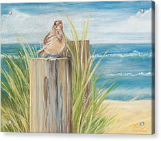 Singing Greeter At The Beach Acrylic Print by Michelle Wiarda