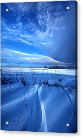 Singing The Blues Acrylic Print by Phil Koch