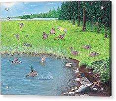 Sitting Ducks Acrylic Print by Cindy Lee Longhini