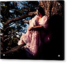 Sitting In A Tree Acrylic Print by Scott Sawyer