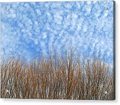 Skies In Waves Acrylic Print by Ross Odom