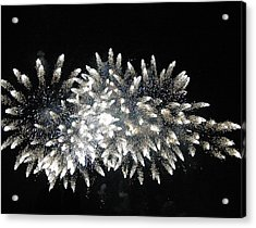 Sky Flowers Acrylic Print by Dan Fulk