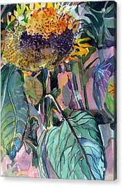Sleepy Sunflower Acrylic Print by Mindy Newman