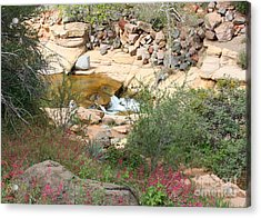 Slide Rock With Pink Wildflowers Acrylic Print by Carol Groenen
