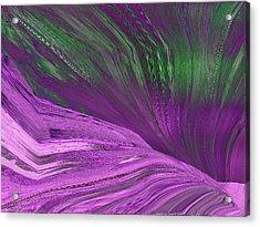 Slippery Slope Acrylic Print by Tim Allen