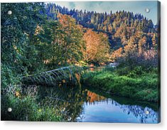 Slow Moving River Acrylic Print by Debra and Dave Vanderlaan