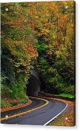 Smokey Mountain Tunnel Acrylic Print by Dennis Nelson