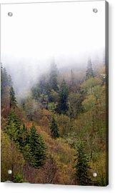 Smoky Mount Vertical Acrylic Print by Marty Koch