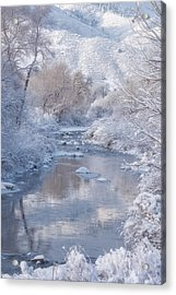 Snow Creek Acrylic Print by Darren White