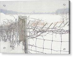 Snow Fence Acrylic Print by Sandra Cunningham