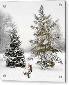 Snow In The Park Acrylic Print by Liviu Leahu
