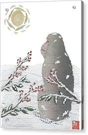 Snow Monkey And Sunrise  Acrylic Print by Keiko Suzuki