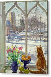 Snow Shadows And Cat Acrylic Print by Timothy Easton