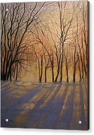 Snow Shadows Acrylic Print by Tom Shropshire