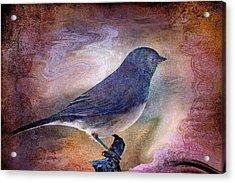 Snowbird Stories... Acrylic Print by Arthur Miller