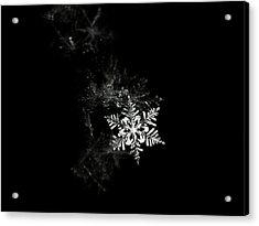 Snowflake Acrylic Print by Mark Watson (kalimistuk)