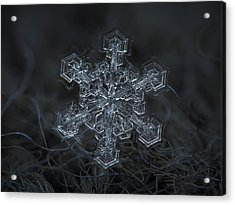 Snowflake Photo - Complicated Thing Acrylic Print by Alexey Kljatov