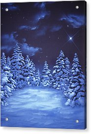 Snowstars Acrylic Print by William Rogers