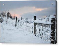 Snowy Day Acrylic Print by Kathy Jennings