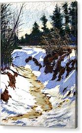 Snowy Ditch Acrylic Print by Mary McInnis