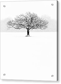 So Alone, A Perfect Reflection Of My Empty Soul Acrylic Print by Matt Anderson