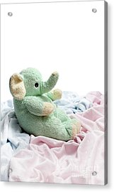 Soft And Cuddly Acrylic Print by Jeannie Burleson