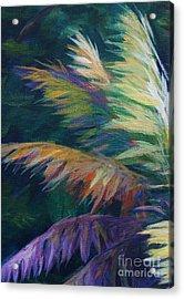 Soft Palm Acrylic Print by John Clark