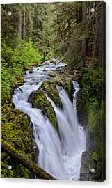 Sol Duc Acrylic Print by Doug Oglesby