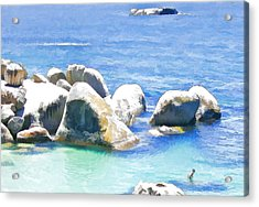Something In The Water. Acrylic Print by Jan Hattingh