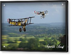 Sopwith Scout 2 Acrylic Print by John Wills