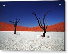 Sossusvlei In Namib Desert, Namibia Acrylic Print by Igor Bilic Photography