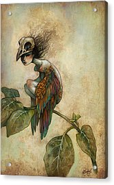 Soul Of A Bird Acrylic Print by Caroline Jamhour