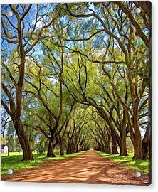 Southern Lane 3 - Paint Acrylic Print by Steve Harrington