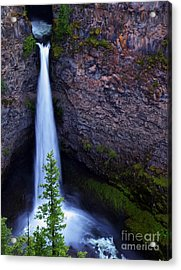 Spahats Falls Acrylic Print by Robert Pilkington