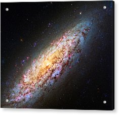 Spiral Galaxy Ngc 6503 Acrylic Print by Marco Oliveira