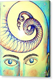 Spiral Of Knowledge Acrylic Print by Paulo Zerbato
